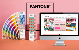 Silk_WorkPage_Pantone1